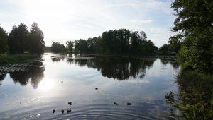 Bialowieza - Park Palacowy 1