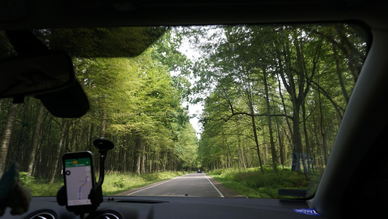 W drodze do Bialowiezy