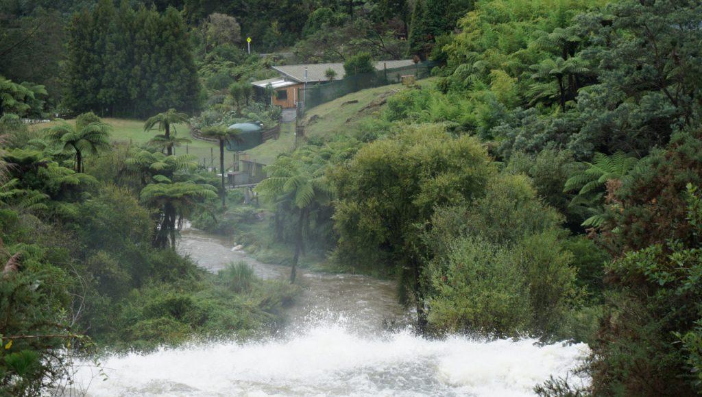 Droga do Rotorua - wstęp do przyrody Nowozelandzkiej