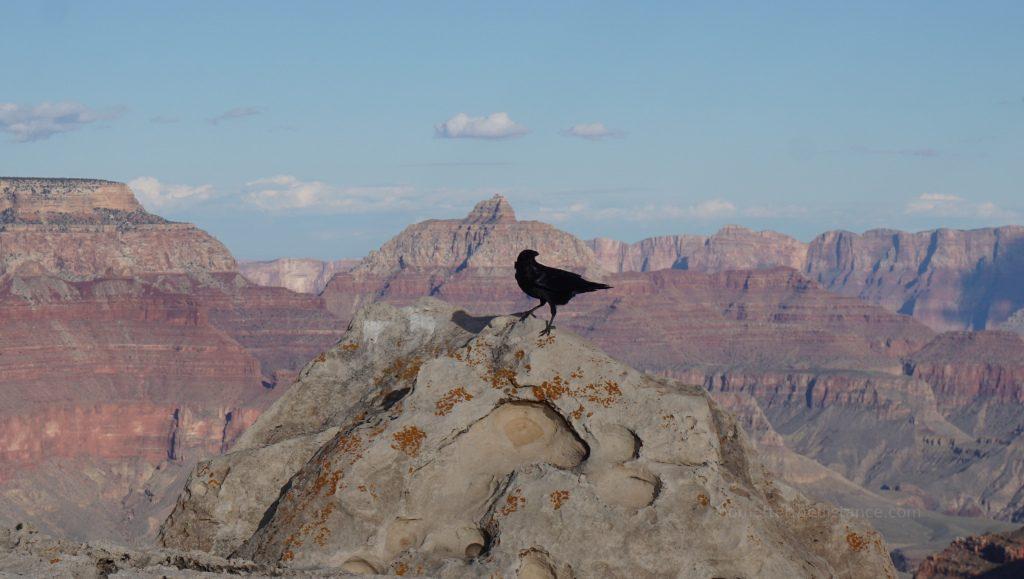 Odwiedziny Kanionu Antelope oraz Horseshoe Bend 12