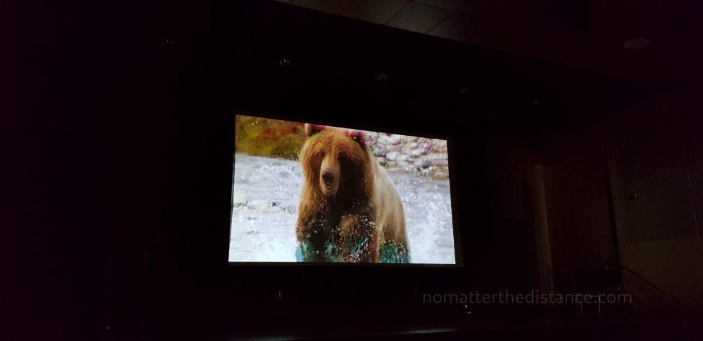 Kino w informacji turystycznej w Fairbanks