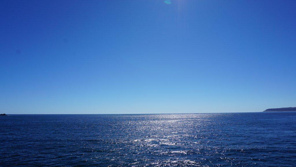 Milford Sound - Morze Tasmana